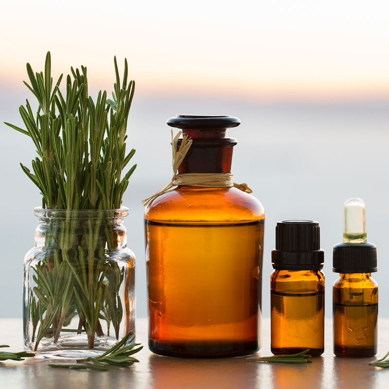 4 Rosemary Essential Oil Uses